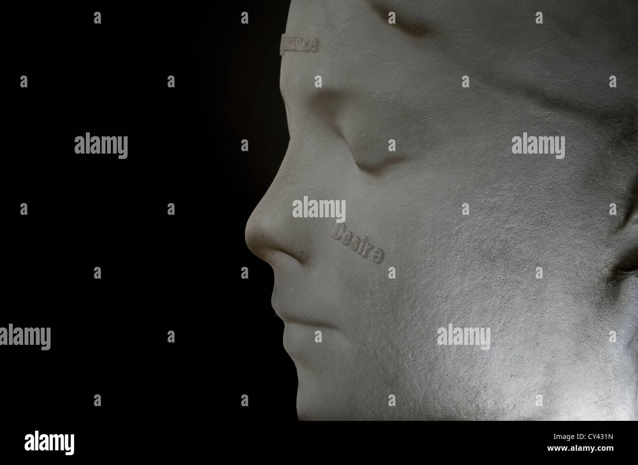 In the Midst of Dreams - from a series of sculptures of alabaster heads by Jaume Plensa, exhibited at Yorkshire Stock Photo