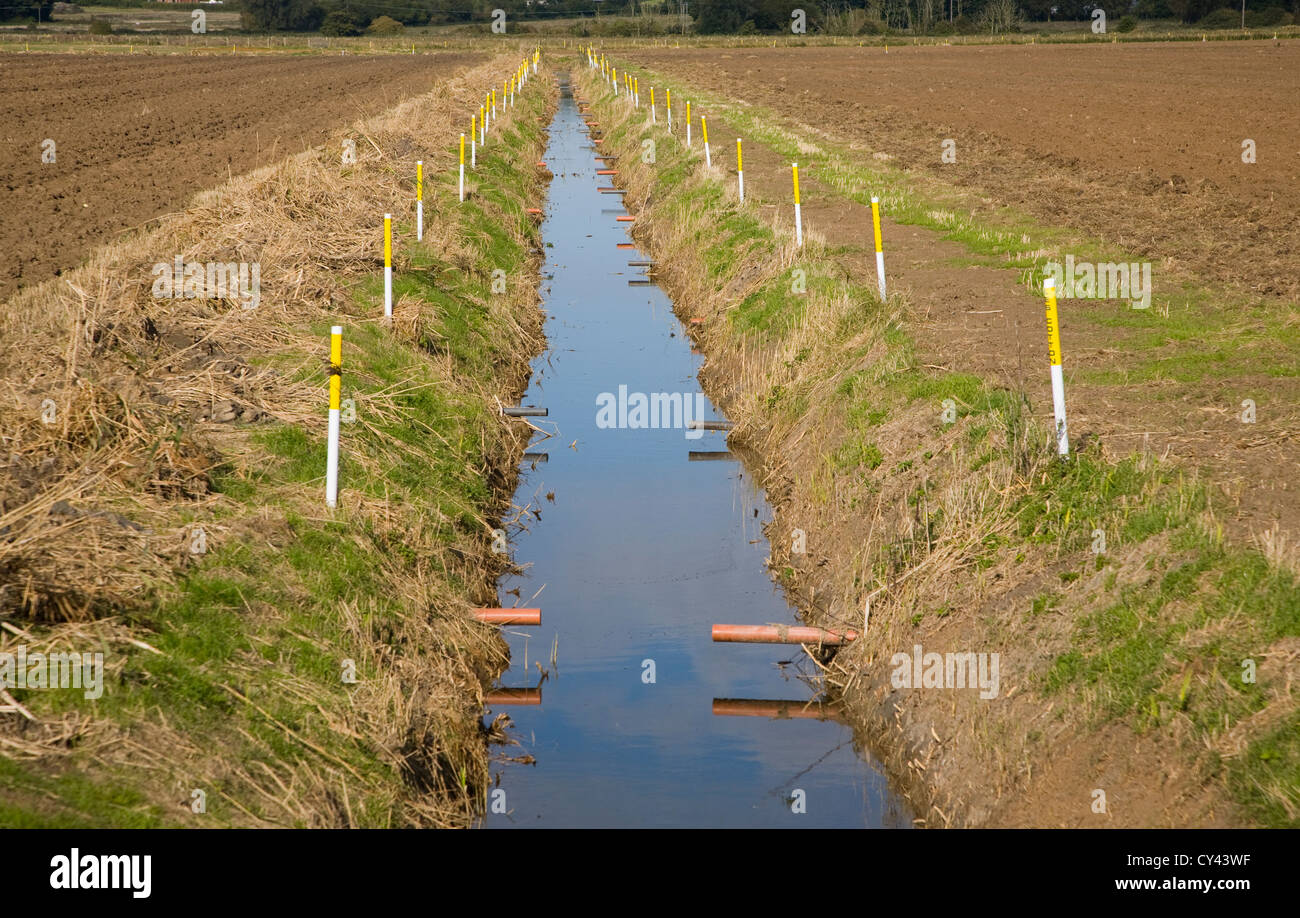 Newly renovated drainage ditch Hollesley, Suffolk, England - Stock Image