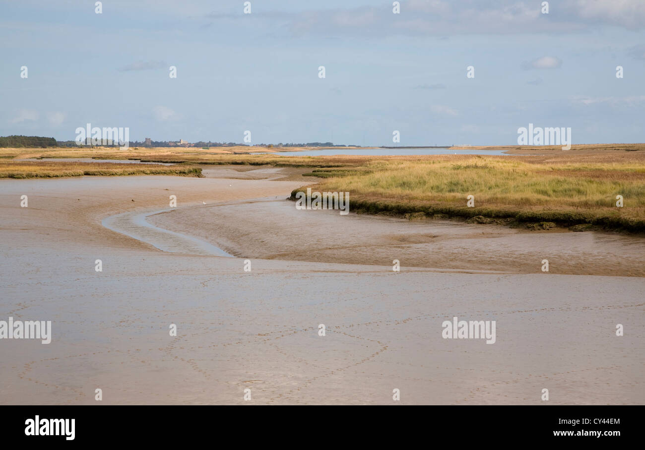 Saltings salt marsh environment River Ore, Hollesley, Suffolk, England Stock Photo