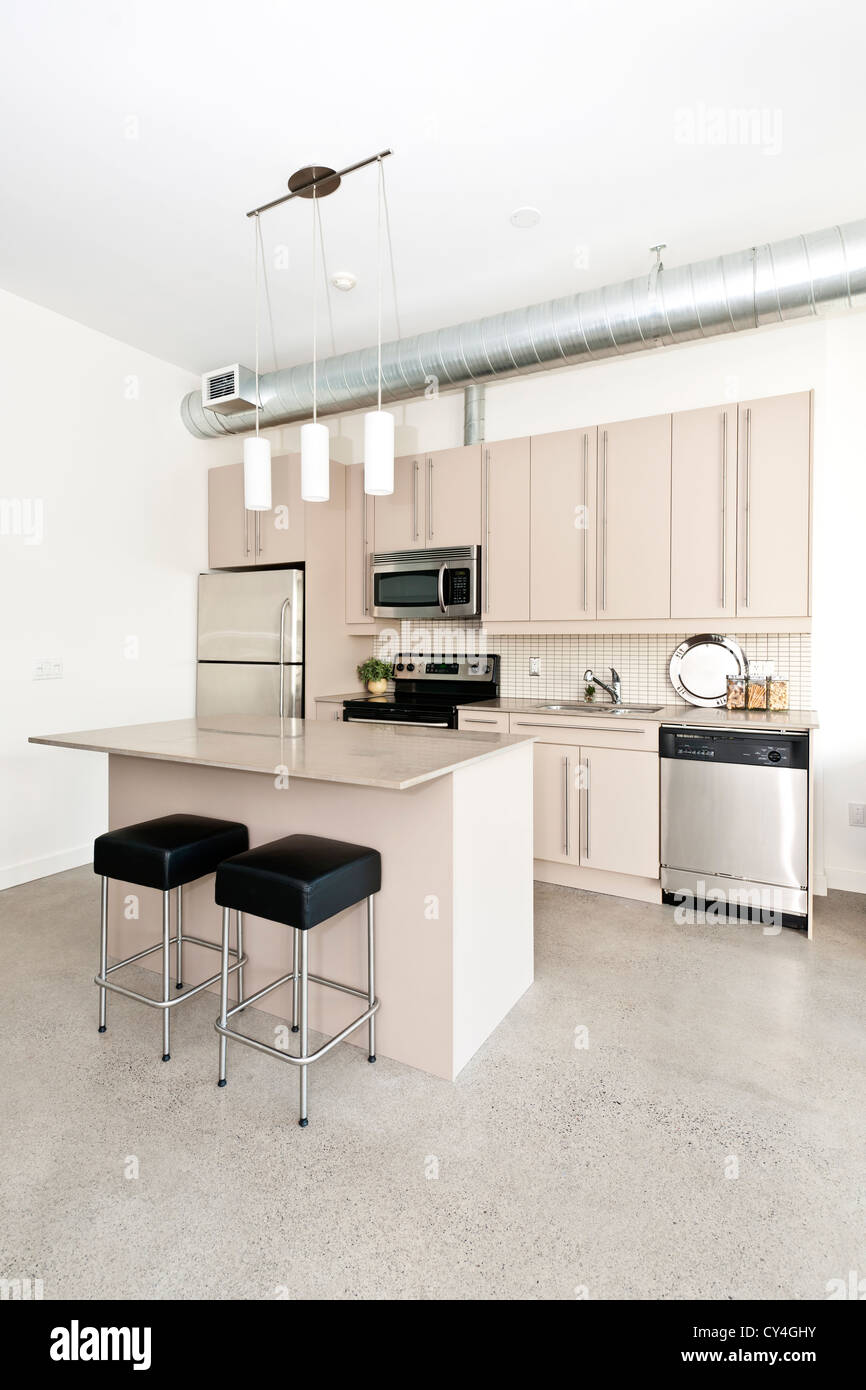 Kitchen In Modern Loft Condo With Island And Stainless Steel Stock Photo Alamy
