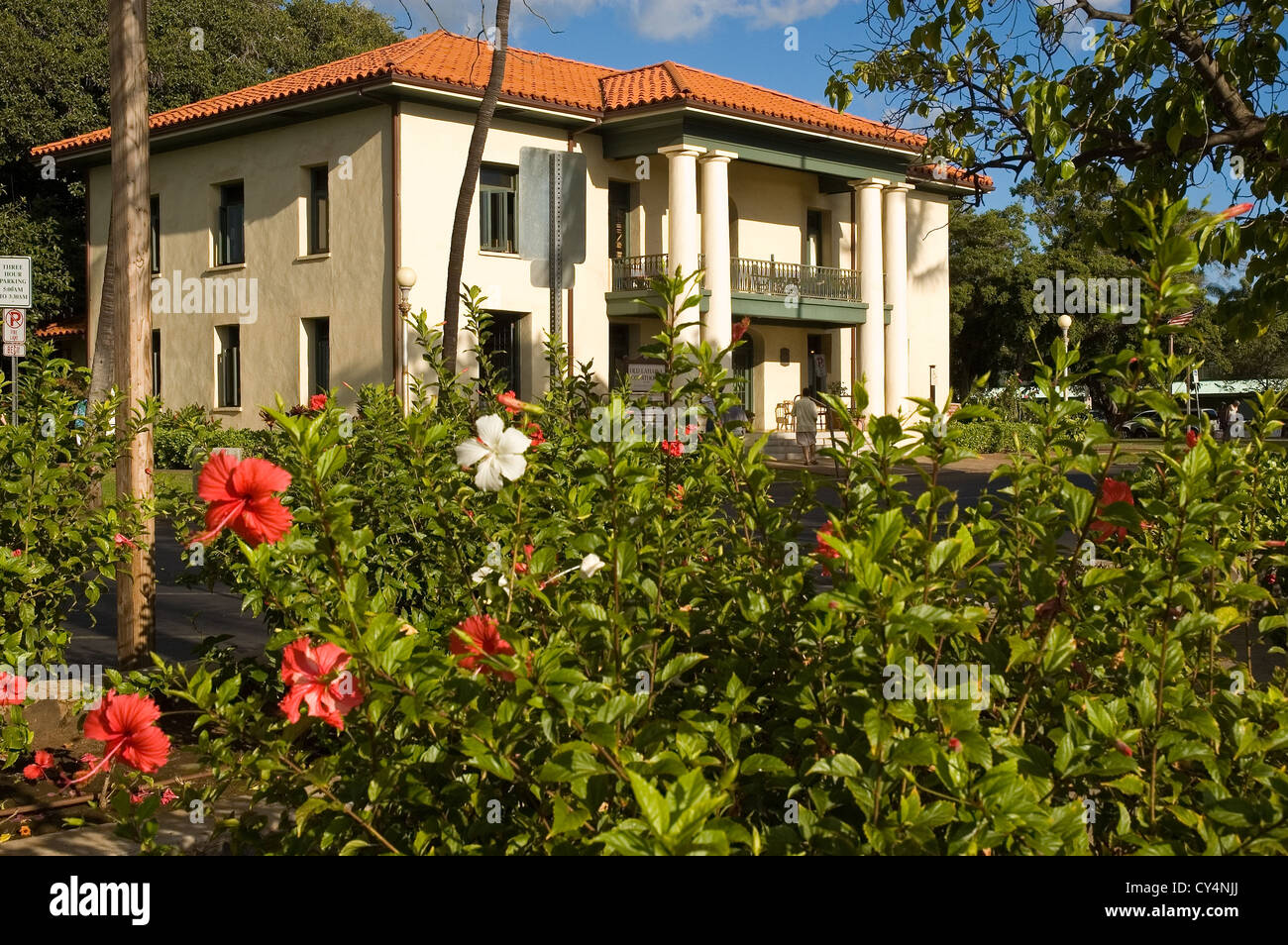 Elk284-4157 Hawaii, Maui, Lahaina, Old Courthouse Museum on Banyan Tree Square, with hibiscus blooming - Stock Image