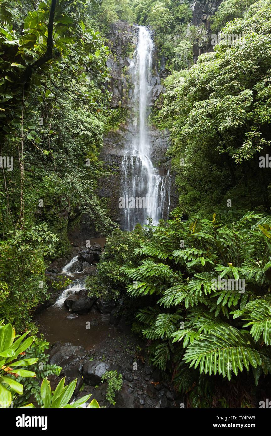 Elk284-4615v Hawaii, Maui, Wailua Falls - Stock Image