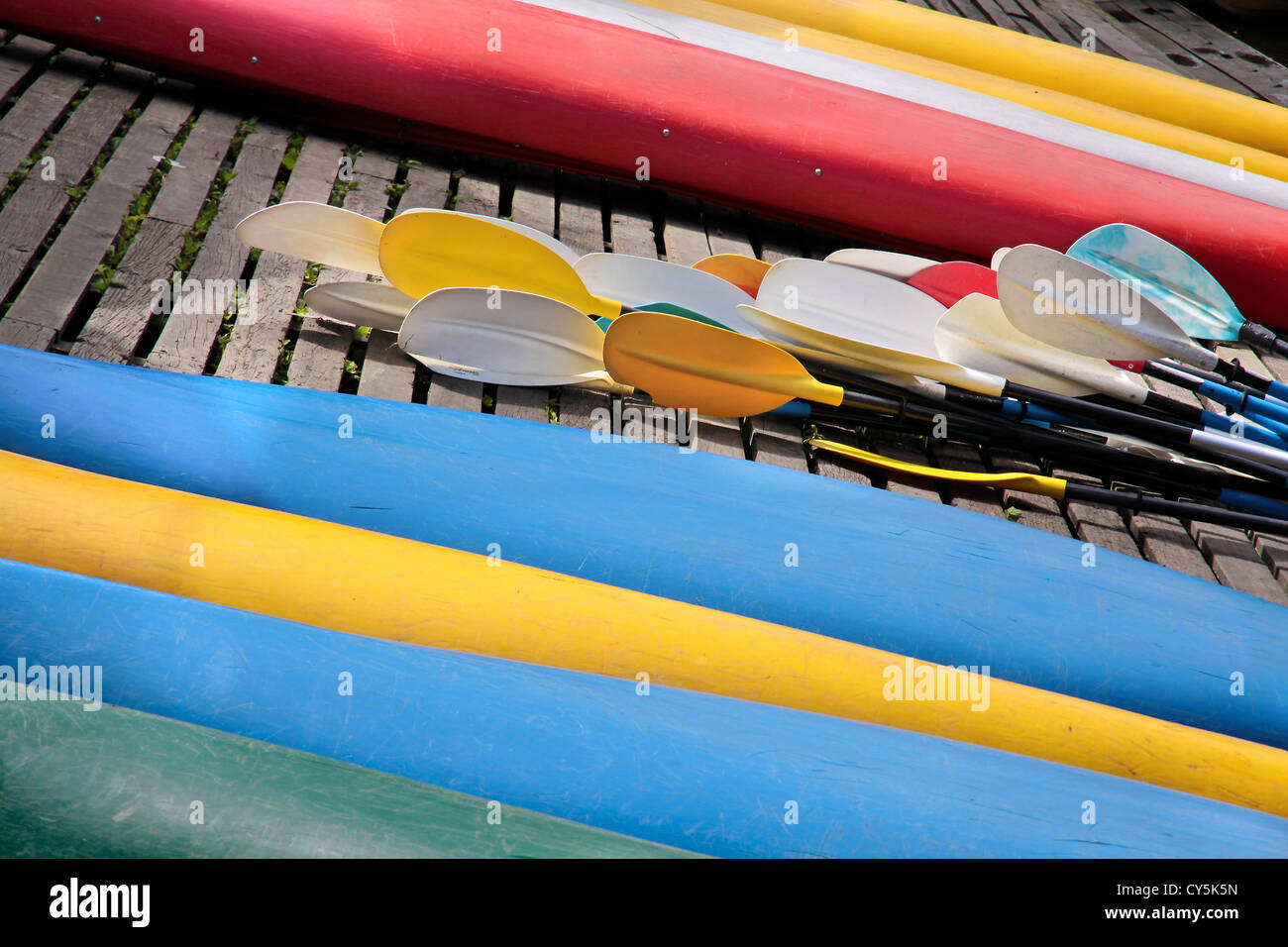 Reversed colorful kayaks and rowing on the shore, Christchurch, Canterbury, South - Stock Image