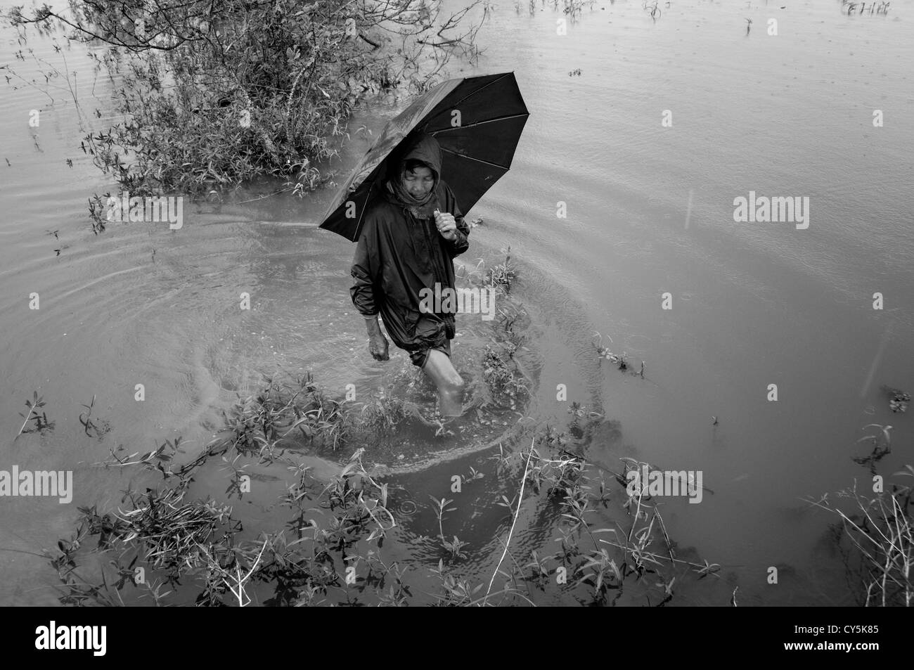 A woman walking with umbrella in a flooded rural area caused by Cyclone Nargis in the Republic of the Union of Myanmar - Stock Image