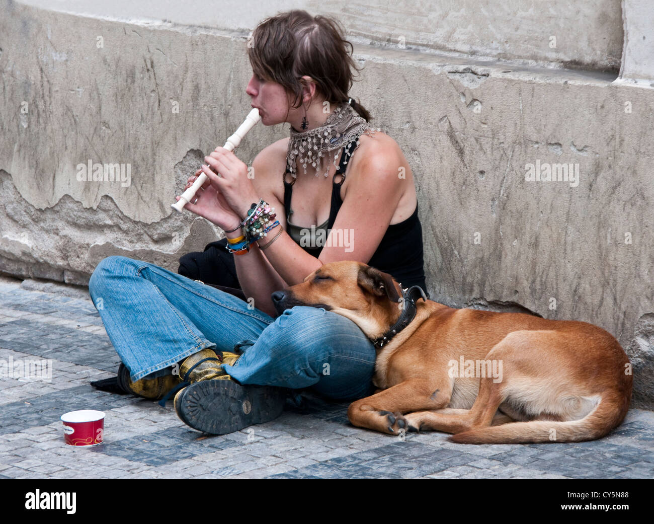 Young woman with her dog begging on street in Prague - Stock Image