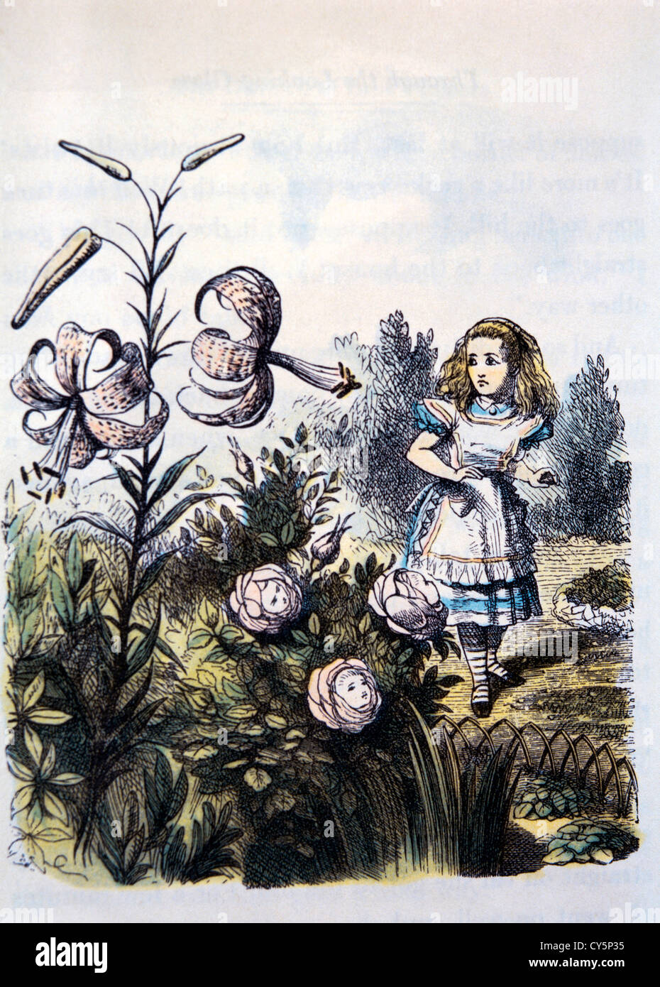 The Garden Of Live Flowers, Through the Looking Glass by Lewis Carroll, Hand-Colored Illustration, Circa 1872 - Stock Image