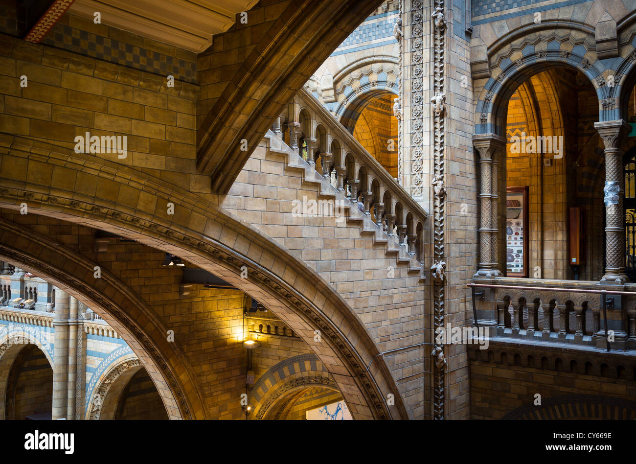 The Natural History Museum is on Exhibition Road, South Kensington, London, England - Stock Image