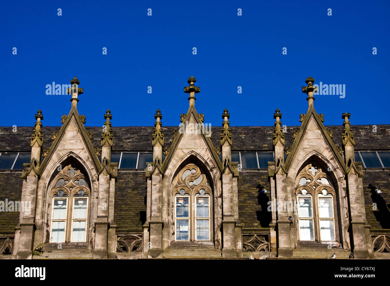 Autumn sun reflections on rows of 1800`s Gothic style windows on an old listed building in Dundee,UK Stock Photo