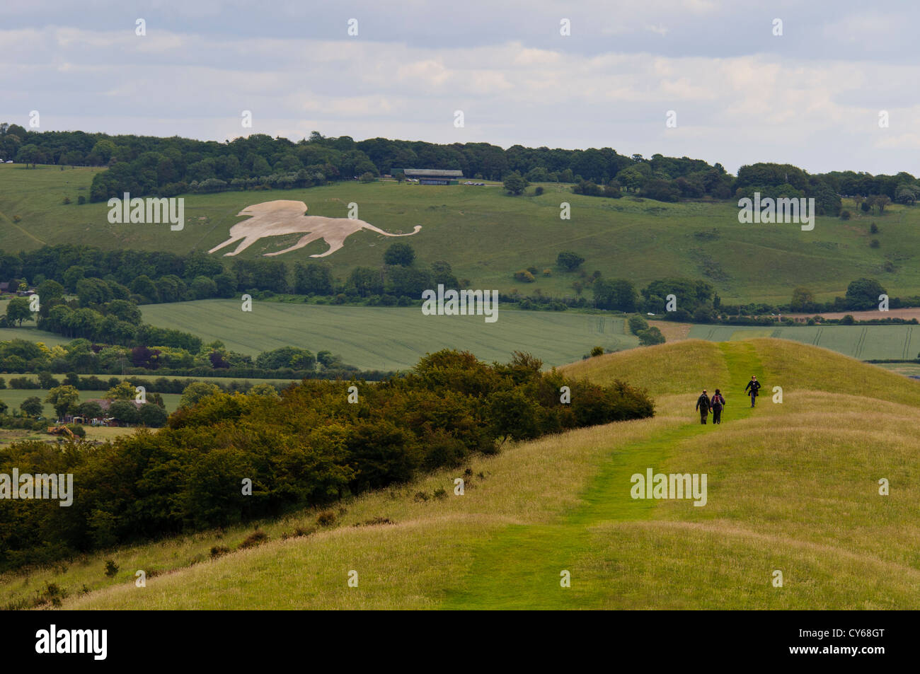 The Whipsnade Lion seen from Ivinghoe Beacon, Buckinghamshire, with the start of the Ridgeway long-distance footpath - Stock Image