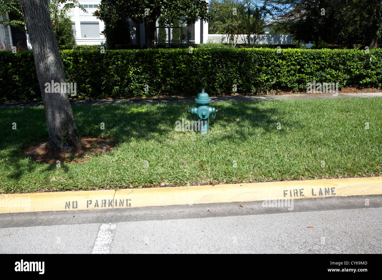 fire hydrant no parking fire lane curb in residential area of celebration florida usa - Stock Image