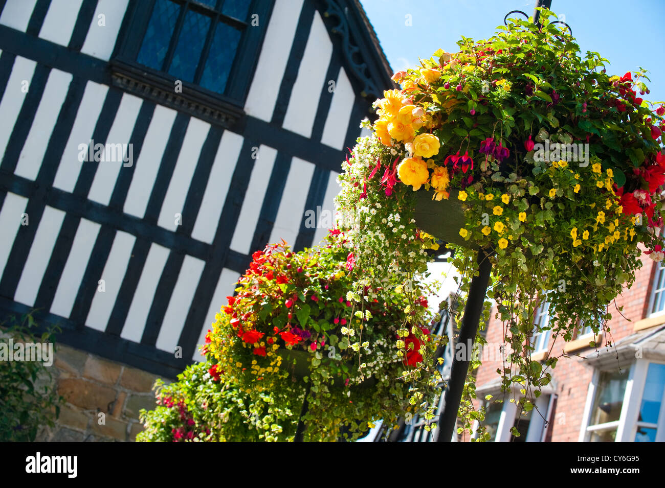 Flowers in hanging baskets, Much Wenlock, Shropshire, England - Stock Image