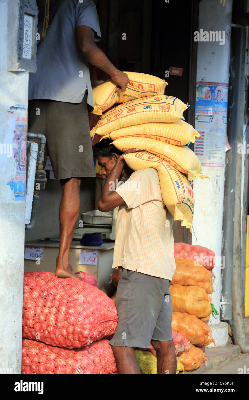 Sri Lankan men stock a shop with sacks of rice and onions in Kandy, Sri Lanka. - Stock Image