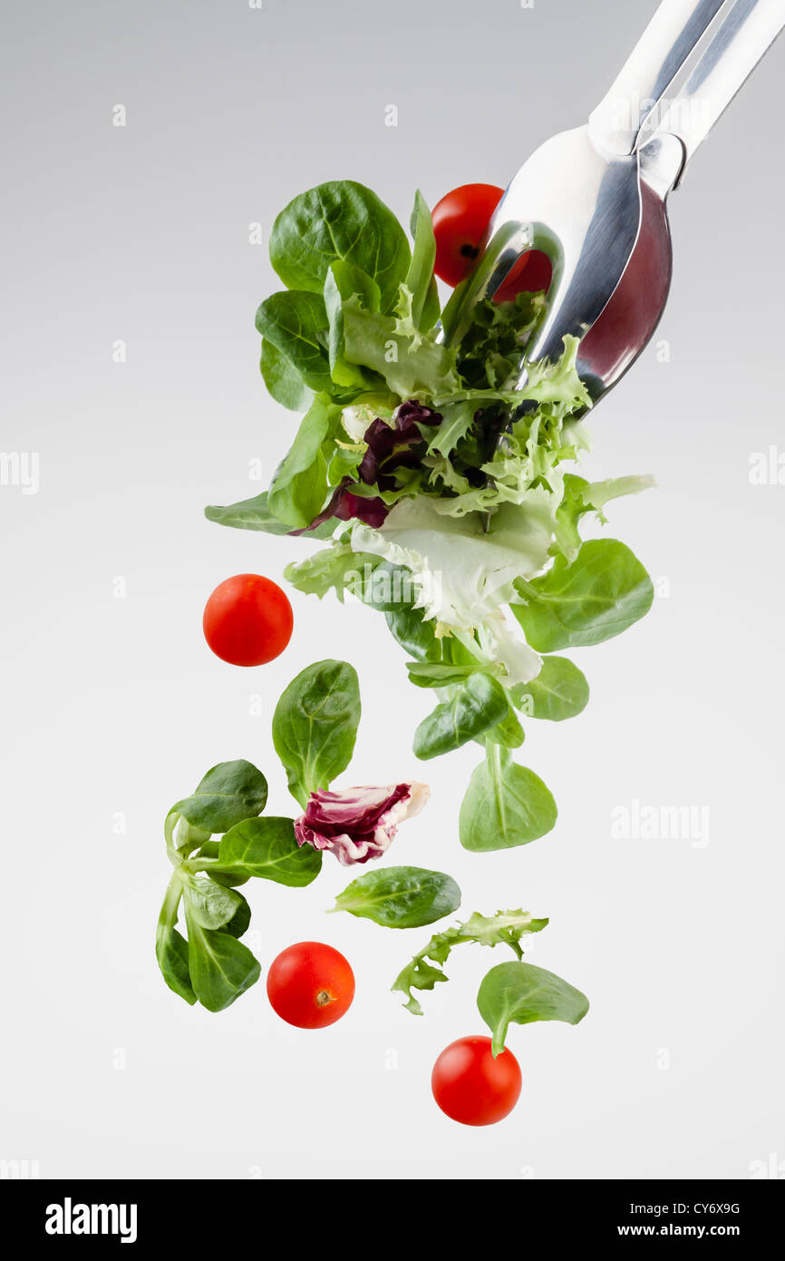 fresh salad falling from a clamp isolated on gray gradient background - Stock Image