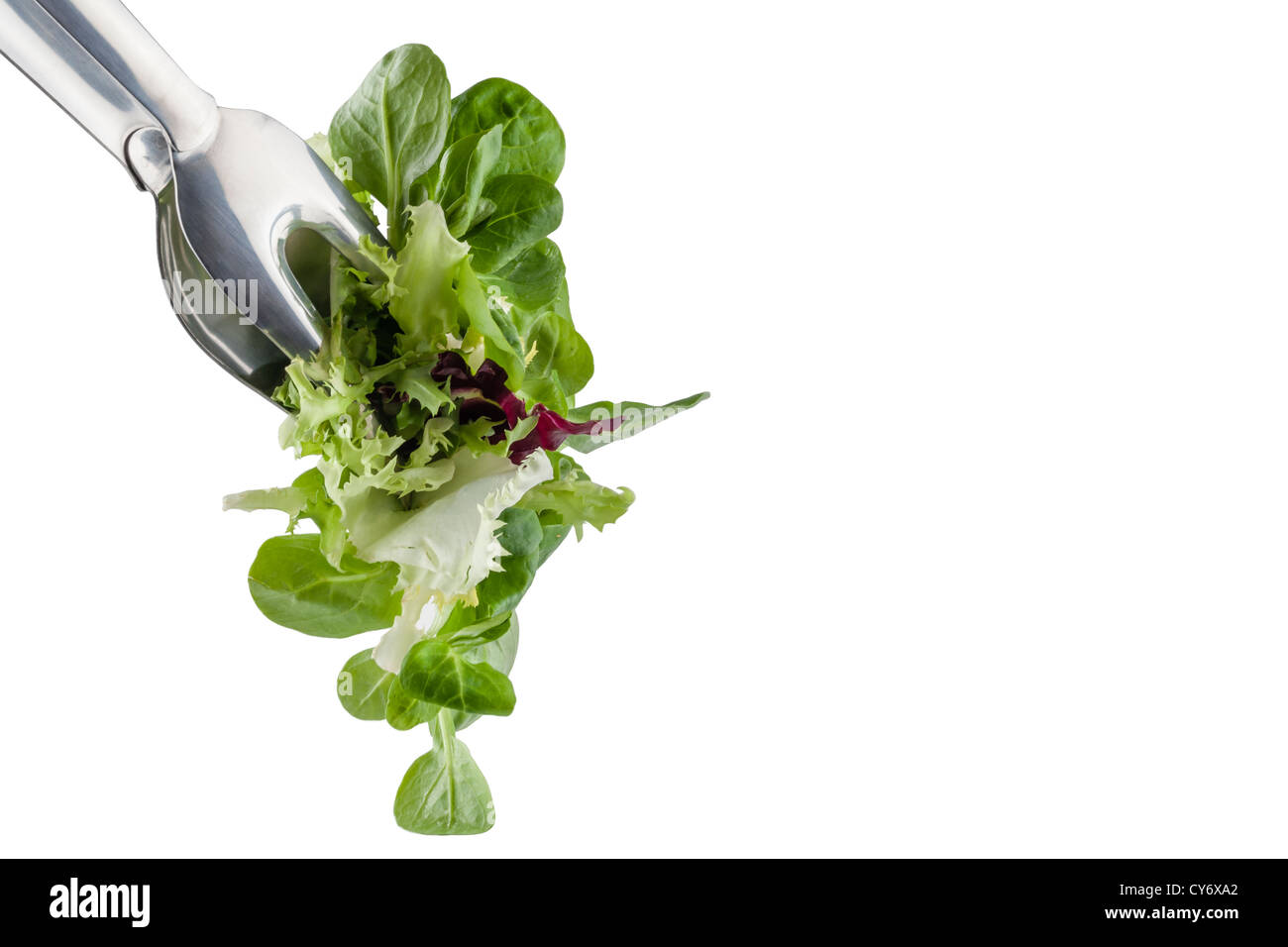 fresh salad in a clamp isolated on white background and copy space - Stock Image