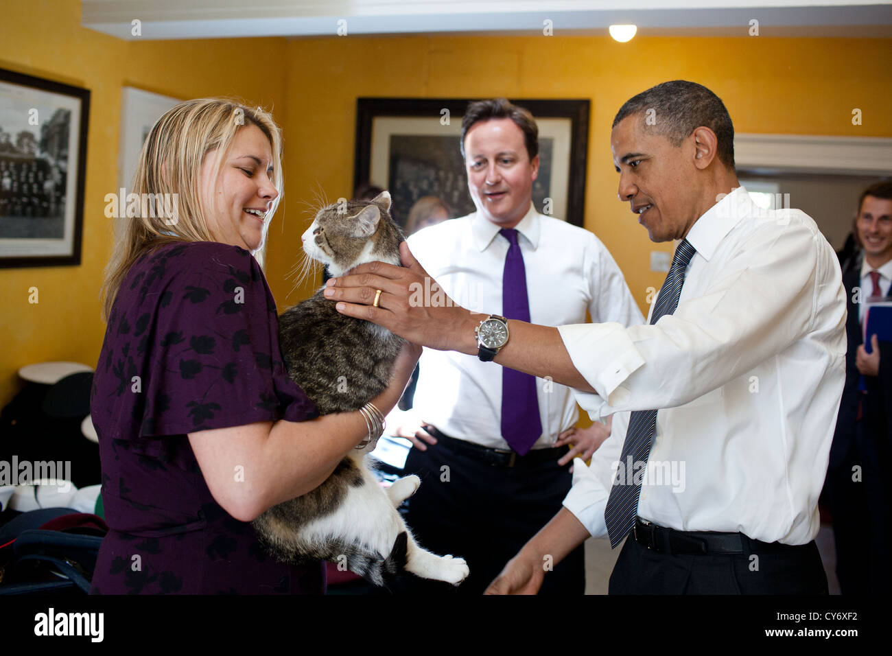 British Prime Minister David Cameron introduces US President Barack Obama to Larry the cat at 10 Downing Street - Stock Image