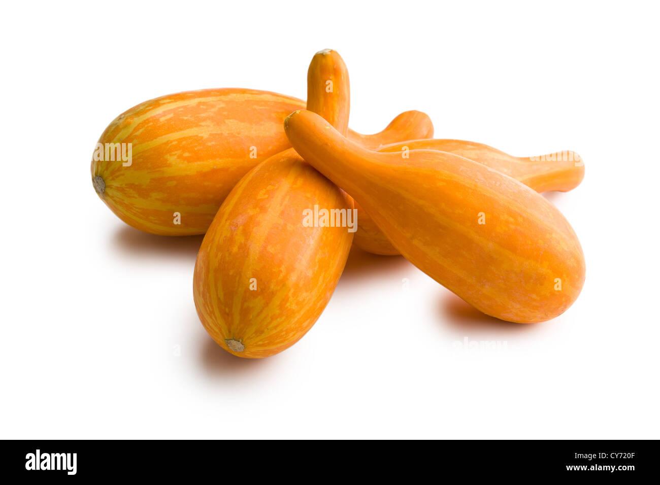 decorative pumpkins on white background - Stock Image