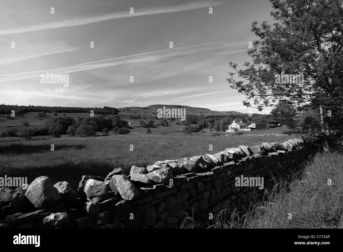 Black and white image panoramic west witton moor overlooking west witton village yorkshire dales north yorkshire england