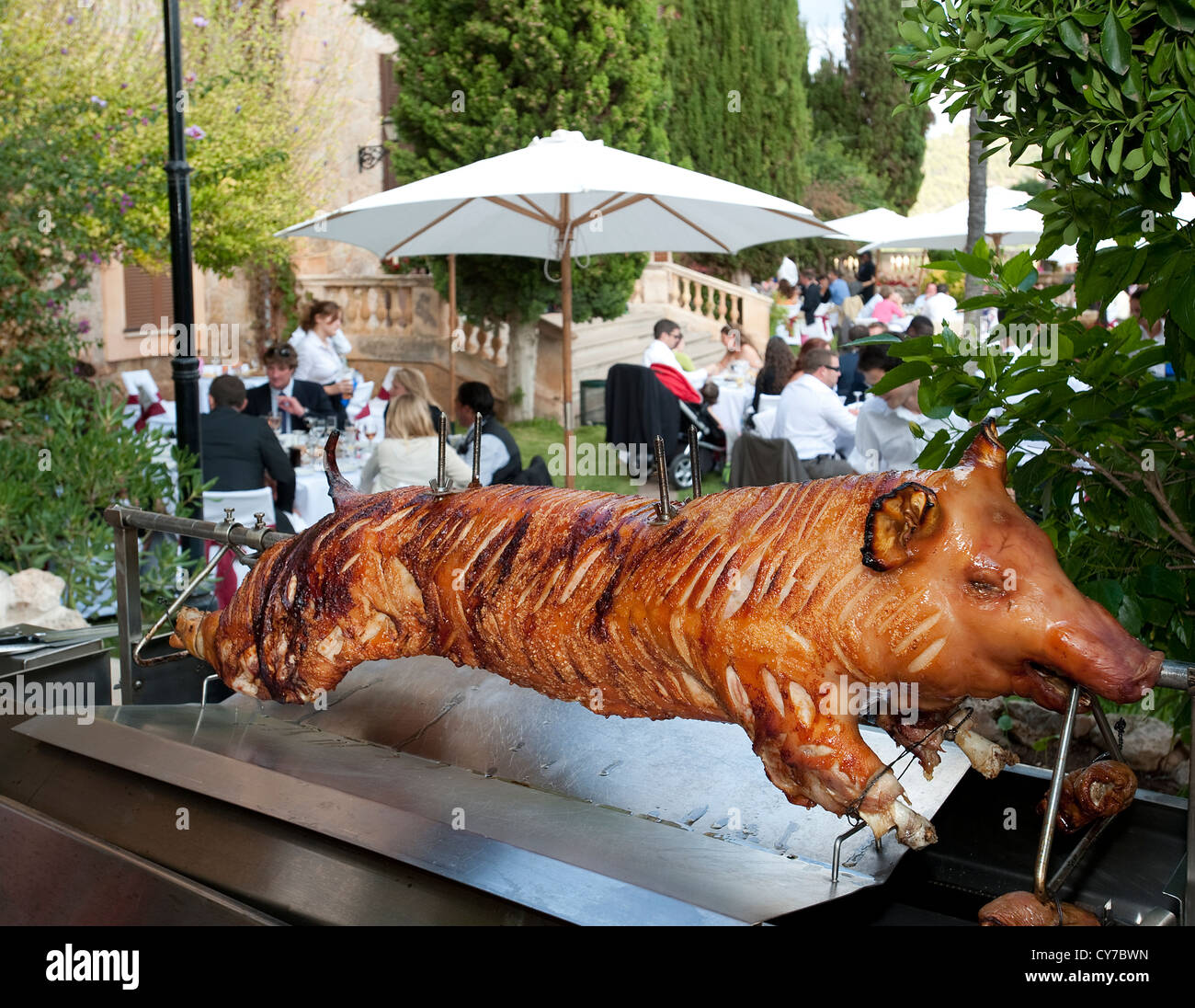 Spit Roast Suckling Pig - Stock Image