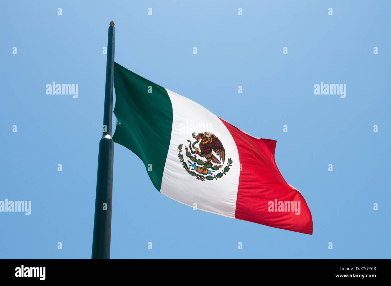 Official flag of the country of Mexico. Stock Photo
