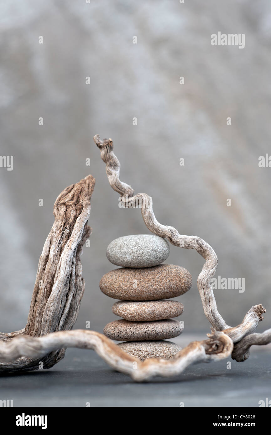 Rotts and river stones photographed on stone. - Stock Image