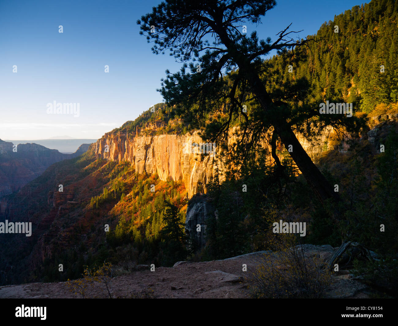 North Rim Trail in Grand Canyon National Park. - Stock Image