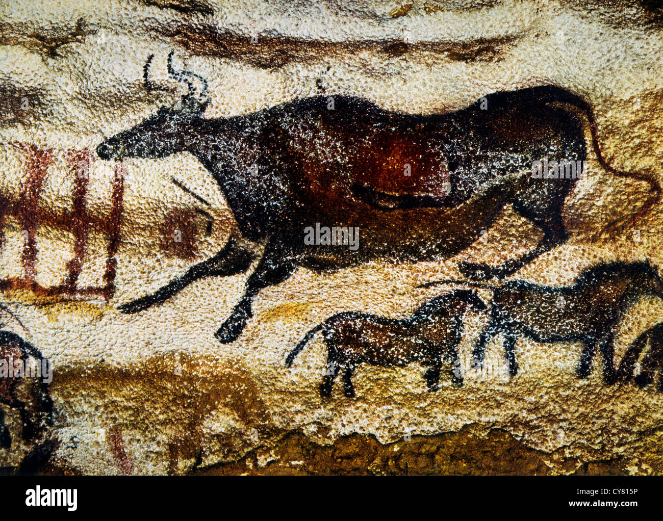 Cave Painting of Cow & Horses, Lascaux, France - Stock Image