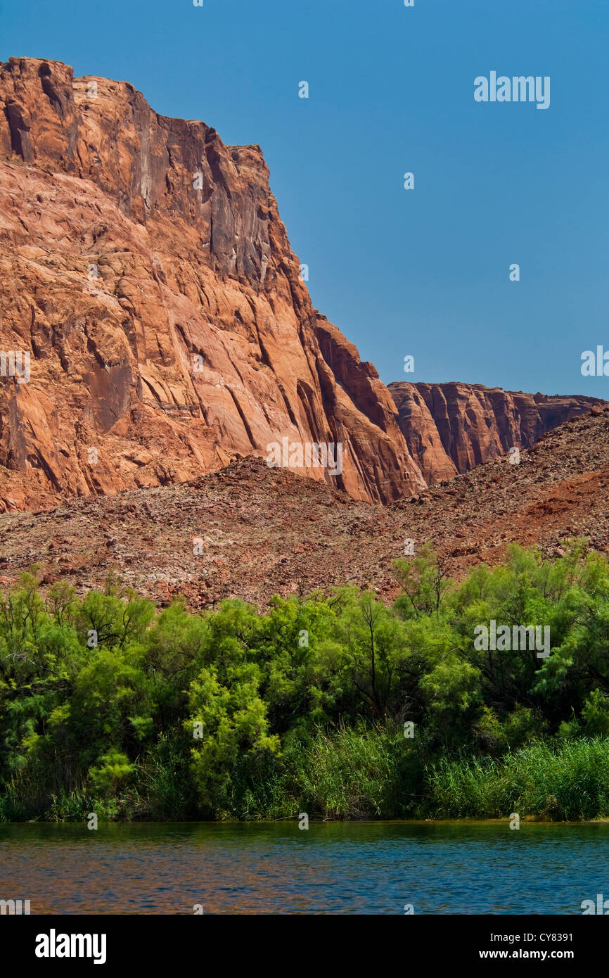 Lees ferry stock photos lees ferry stock images alamy red rock cliffs above the colorado river at lees ferry glen canyon national recreation area publicscrutiny Image collections