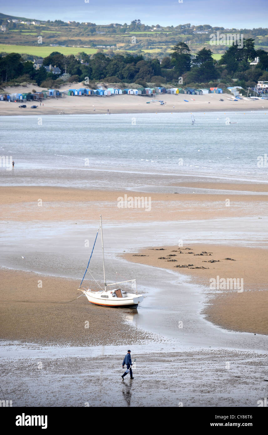 A fisherman carrying a spade to dig for lugworms crosses the sands on Borth Fawr or Main Beach at Abersoch on the - Stock Image