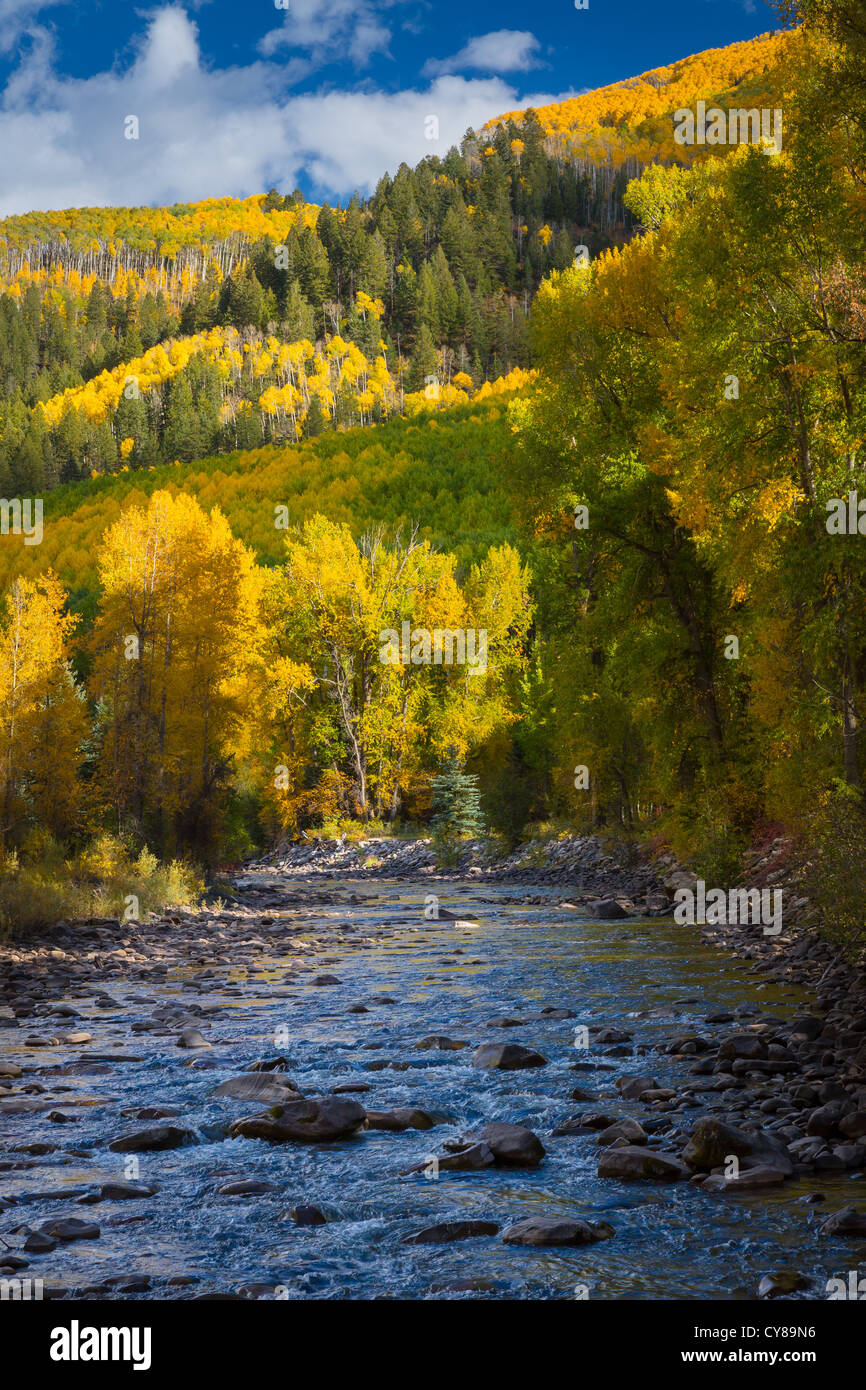 Aspens on hillside in the San Juan mountains of Colorado with small river in foreground - Stock Image