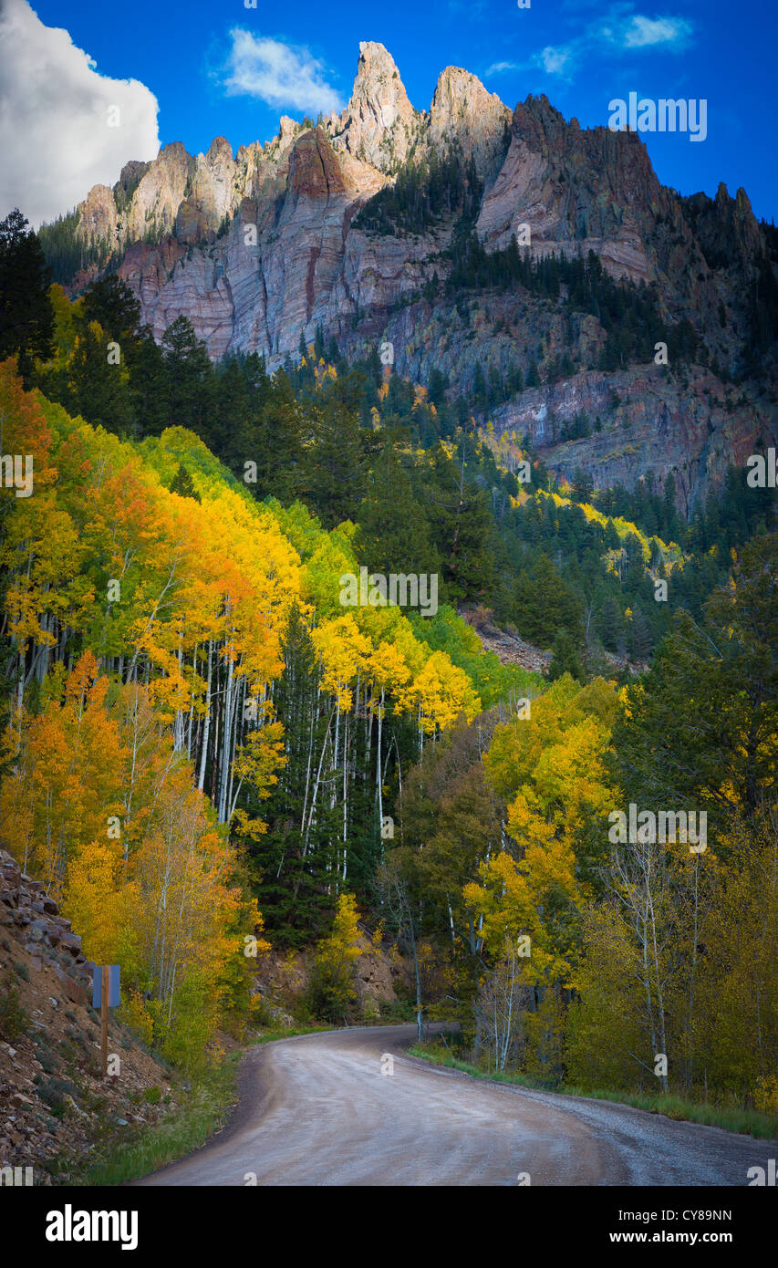 Aspens on hillside in the San Juan mountains of Colorado with Silver Mountain peak in the background - Stock Image