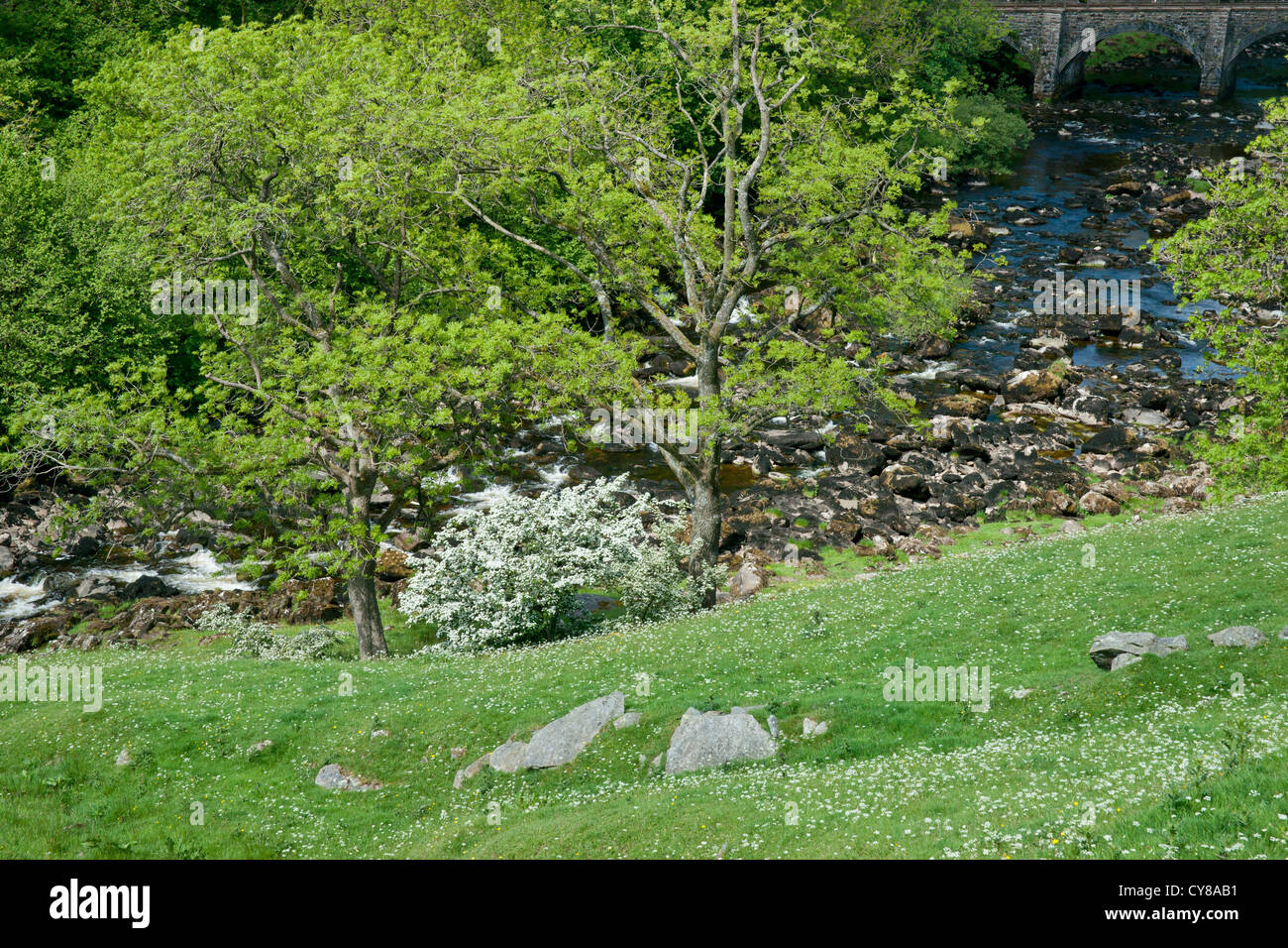 SONY DSC Low lying river extending from beneath a stone bridge weaving a course beside trees, plants and rocks - Stock Image
