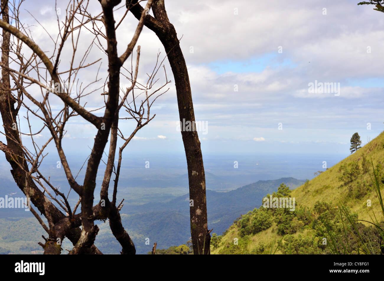 View of the valley at Thiruvananthapuram - Stock Image