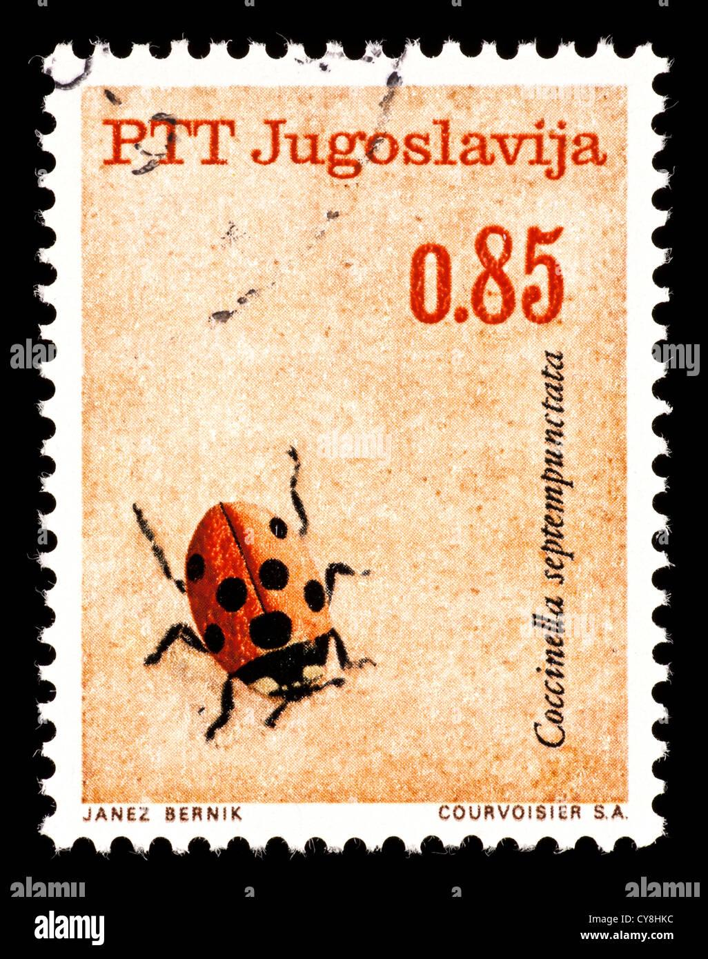 Postage Stamp From Yugoslavia Depicting A Ladybug Beetle Coccinella Septempunctata