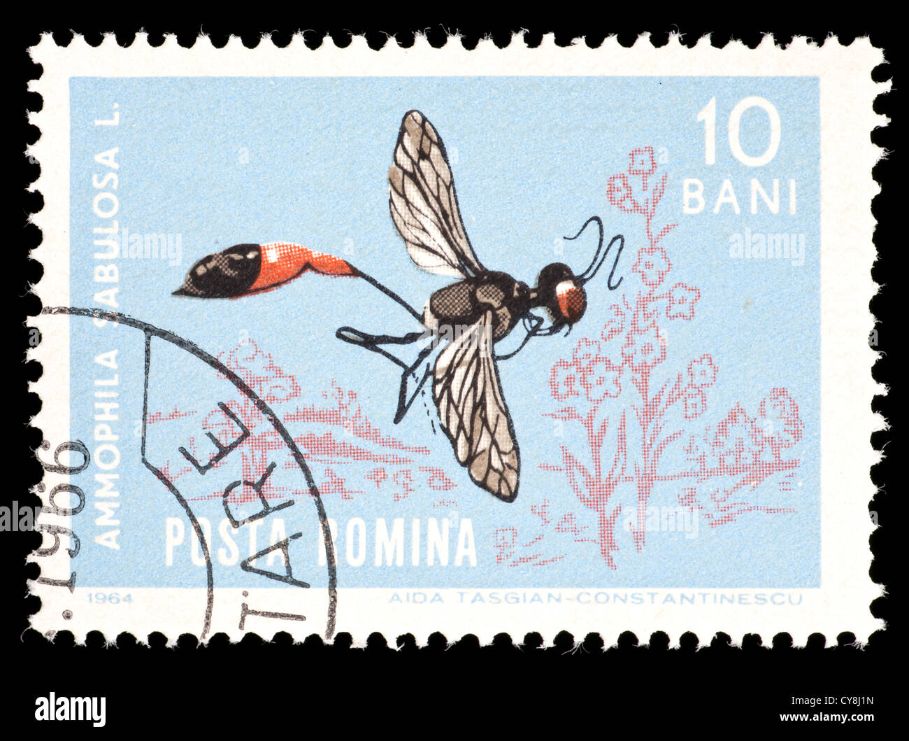 Postage stamp from Romania depicting a red-banded sand wasp (Ammophila sabulosa) Stock Photo