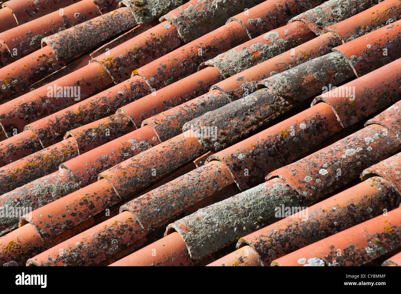 roof with old stains on the tiles, - Stock Image