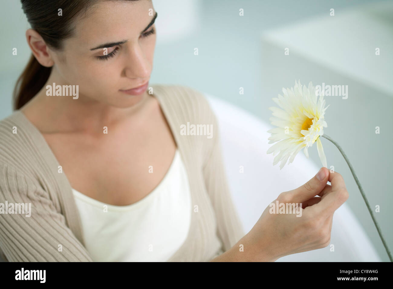 Young woman plucking petals from gerbera daisy - Stock Image