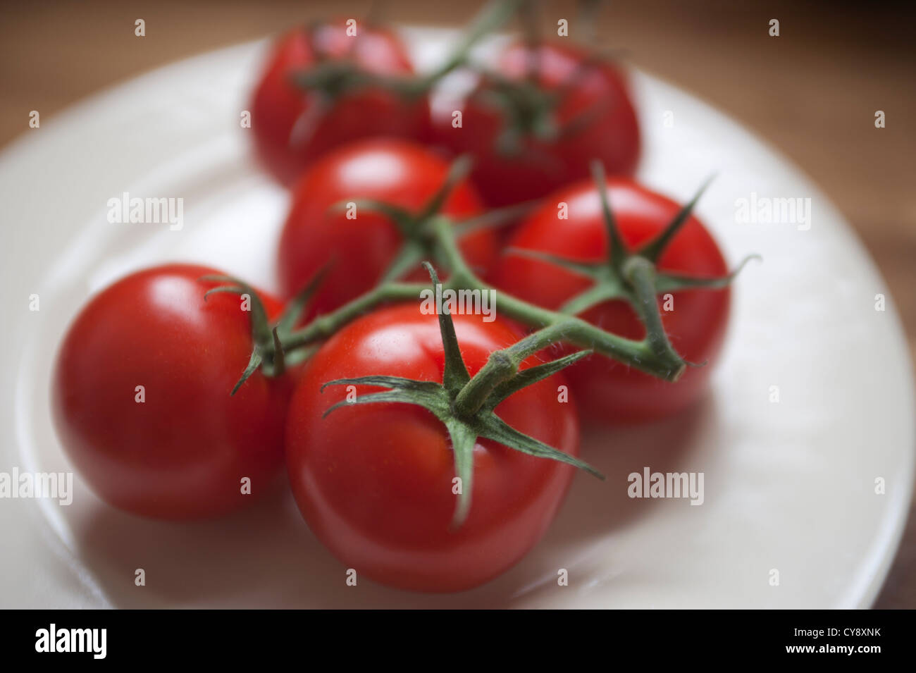 Group of Tomatoes on a white plate. Tomatoes are still connected to the vine stems. Stock Photo