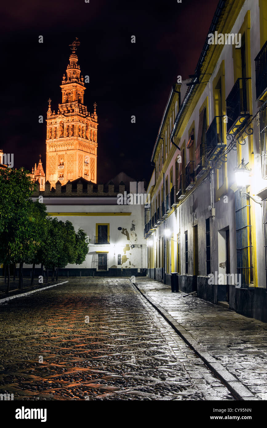 Night view Giralda tower, Seville, Andalusia, Spainn - Stock Image