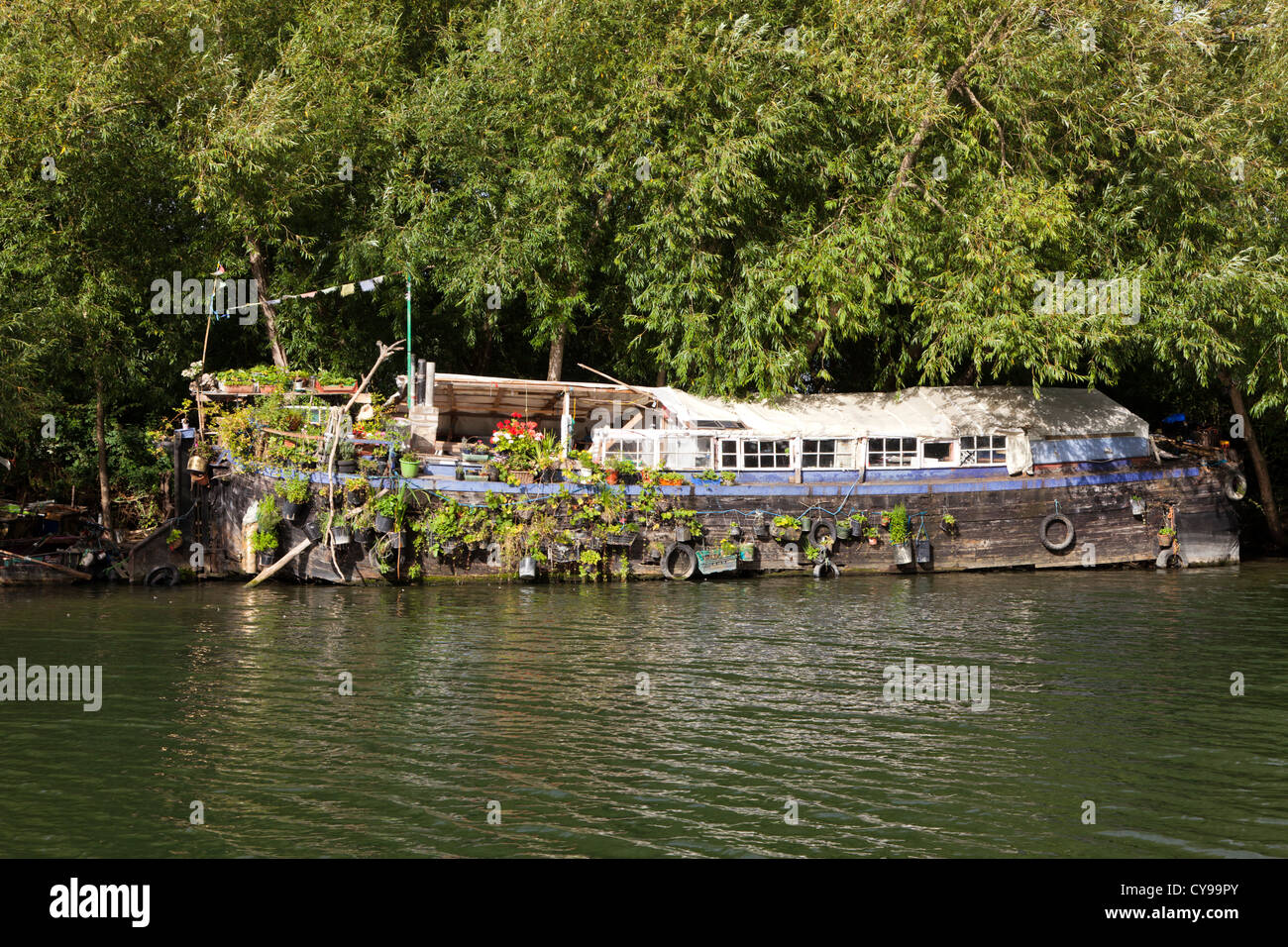 Decaying boat on the River Thames near Reading, Berkshire, UK - Stock Image