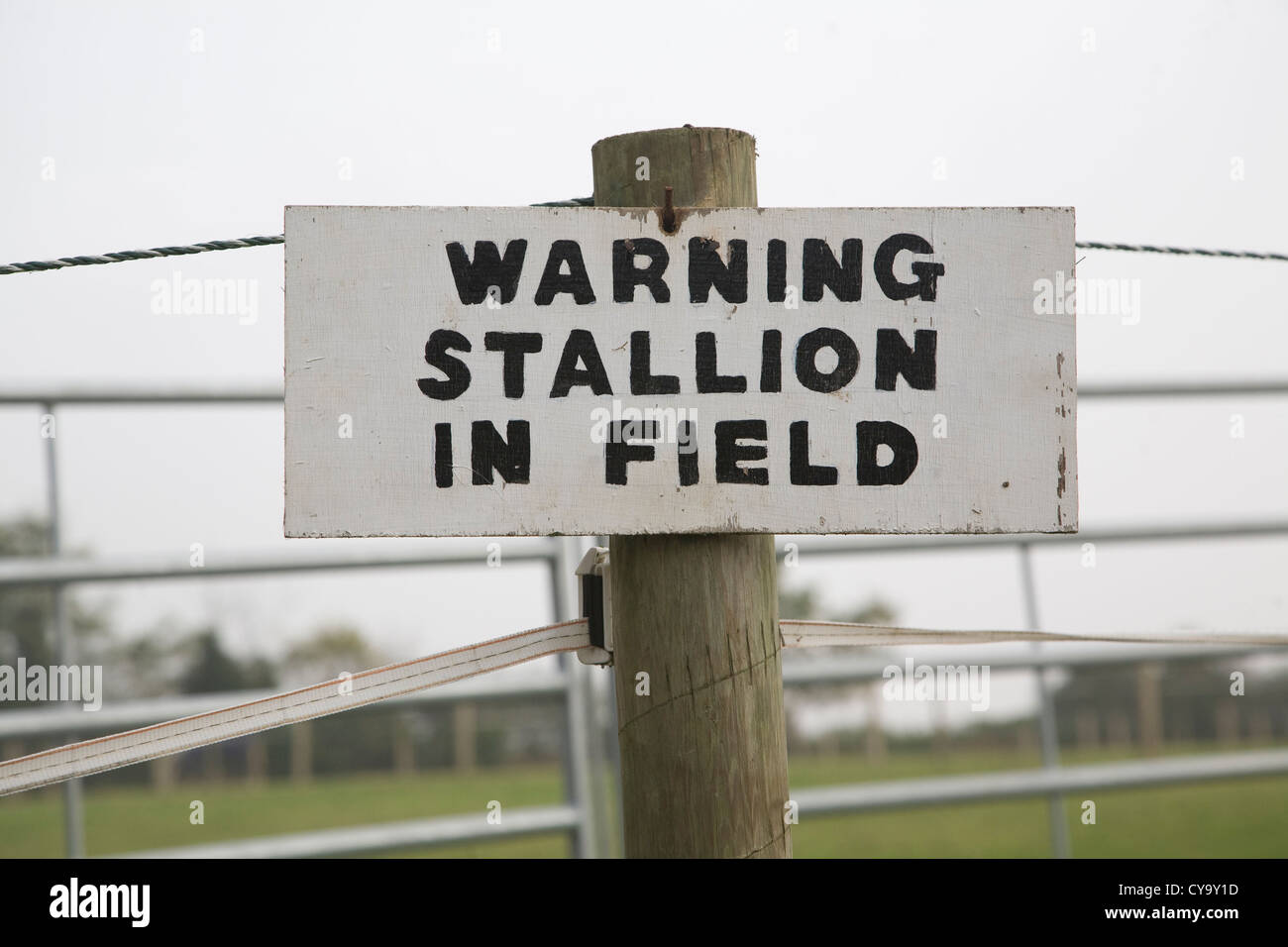 Sign warning stallion in field on wooden post - Stock Image