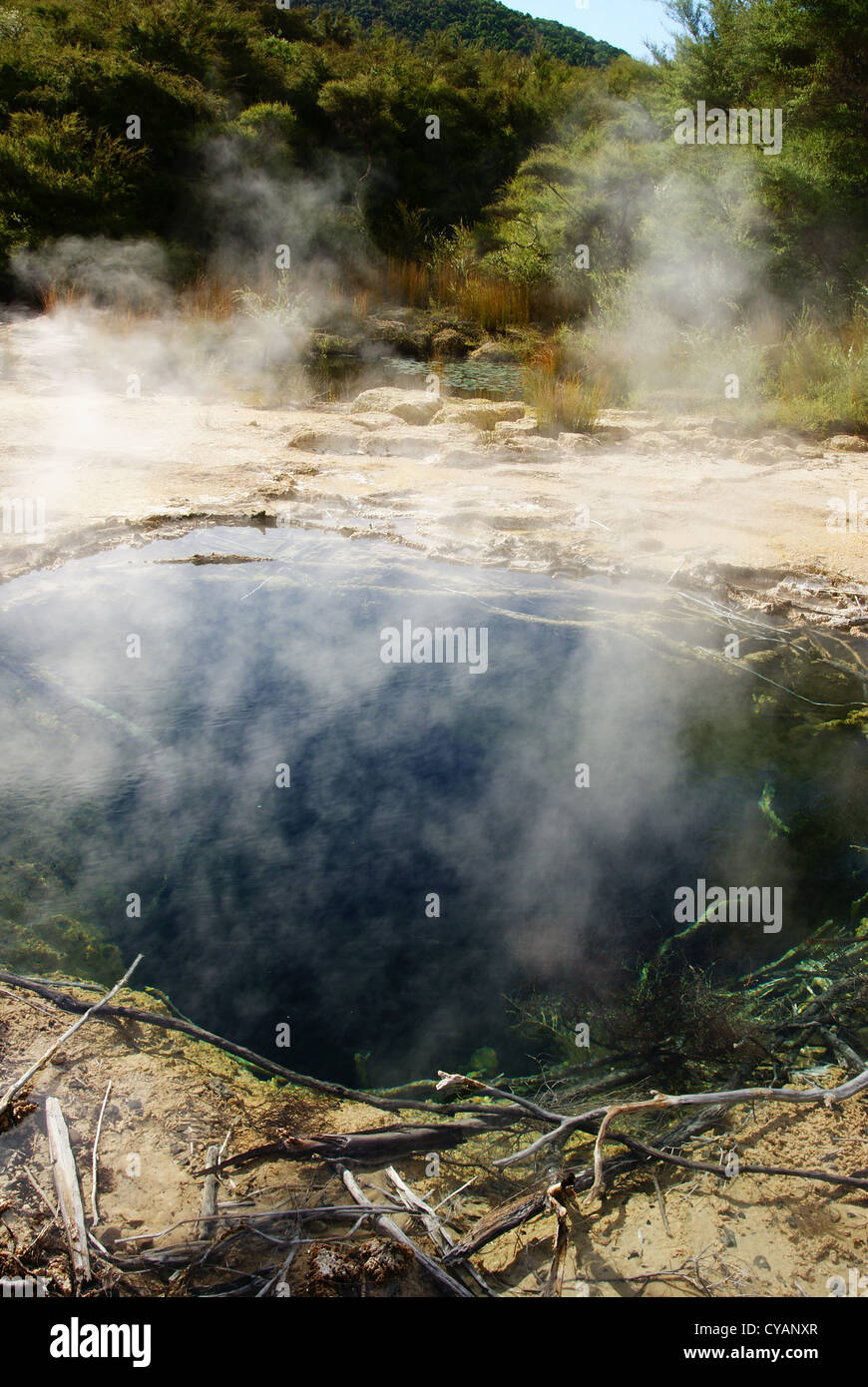 Thermal Pools at Tokaanu, Turangi, New Zealand - Stock Image