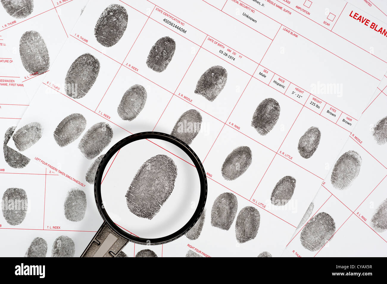 A forensic inspector looks at a suspect fingerprint on legal detective files. - Stock Image