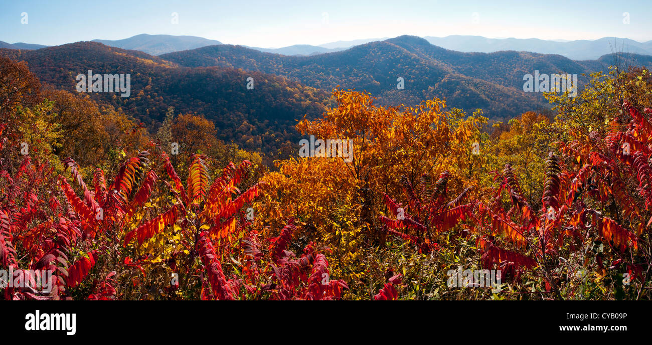 Autumn In Blue Ridge Mountains Panoramic Composite Image