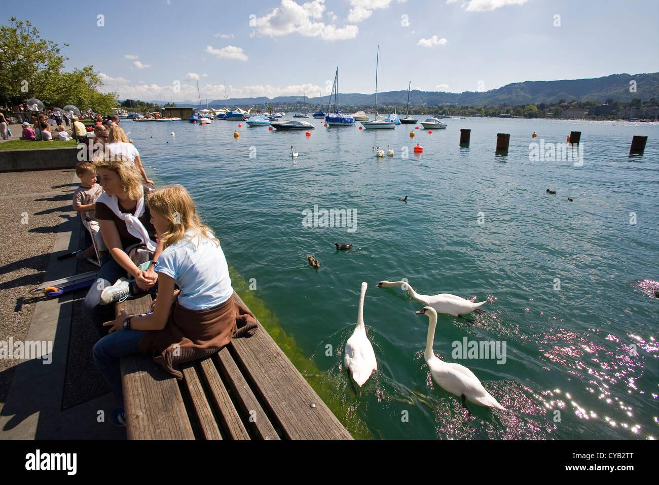 europe, switzerland, zurich, lake of zurich - Stock Image