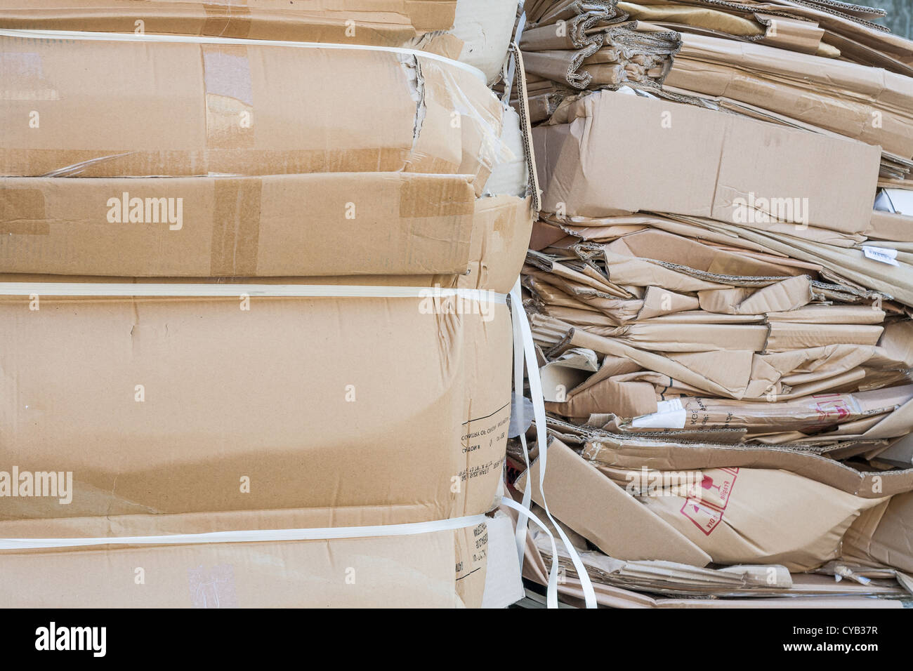 waste cardboard recycling paper environment recycle Stock Photo