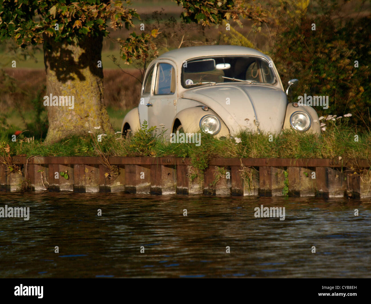 Classic VW Beetle parked under a tree next to a canal, UK - Stock Image