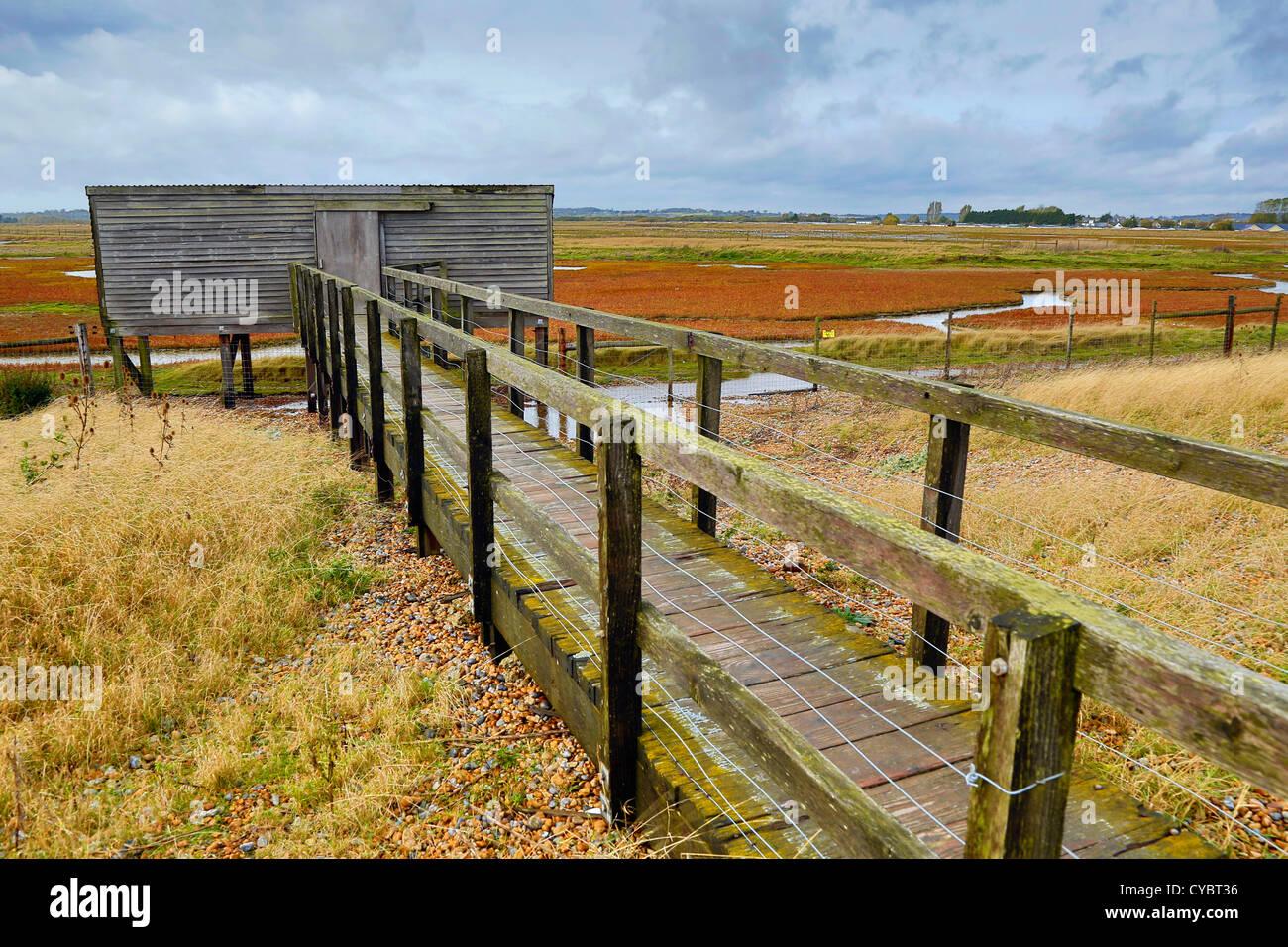 Rye Harbour; Bird Hide; East Sussex; UK - Stock Image