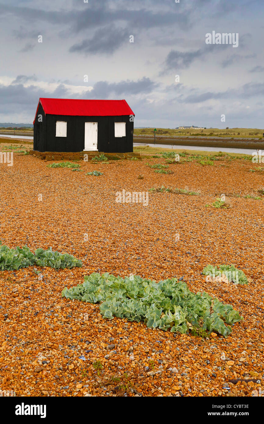 Rye Harbour; Red Roof Shed; East Sussex; UK - Stock Image