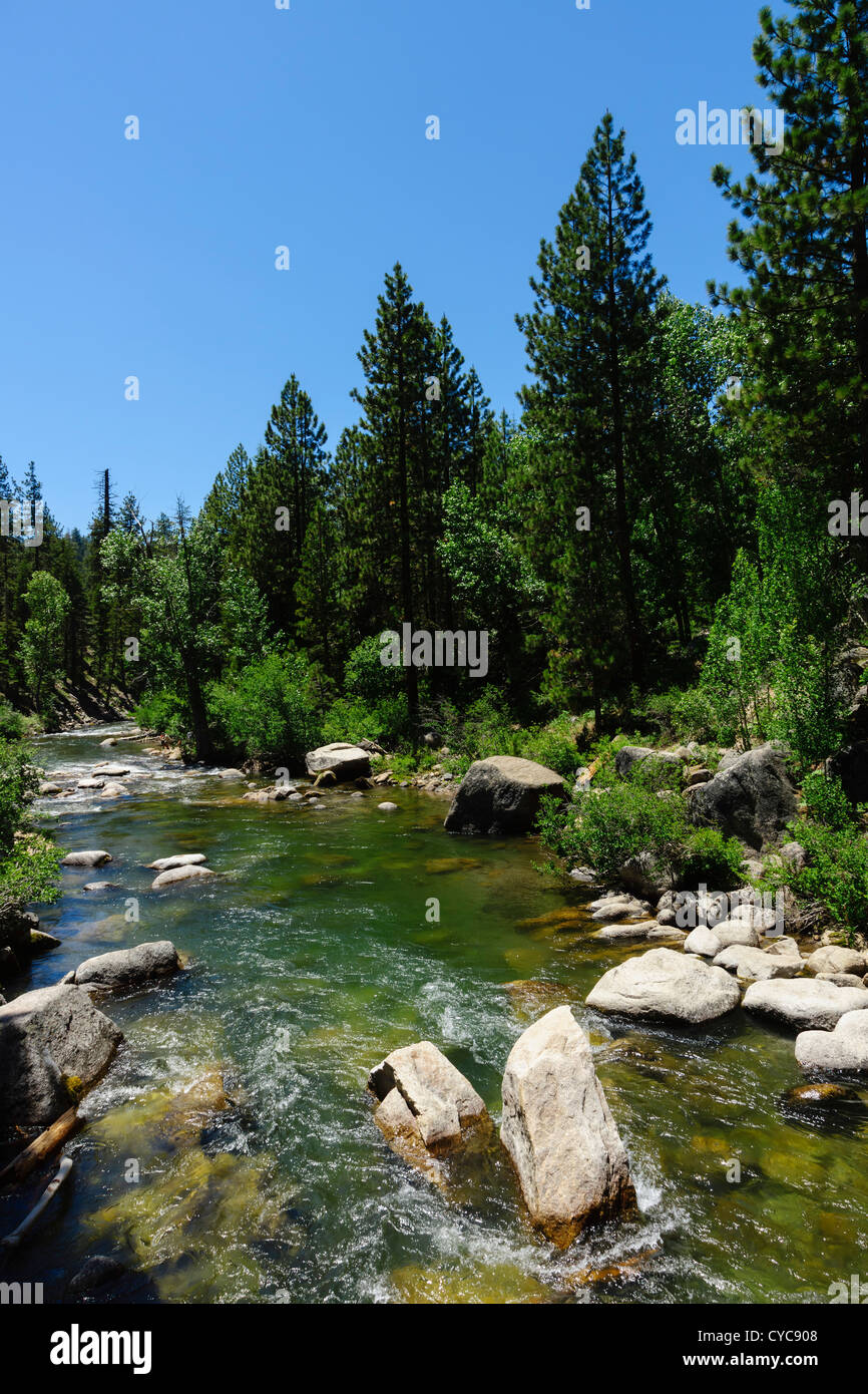 Sonora Pass, Sierra Nevada, California - South Fork, Stanislaus River, at the Columns of the Giants trail. - Stock Image