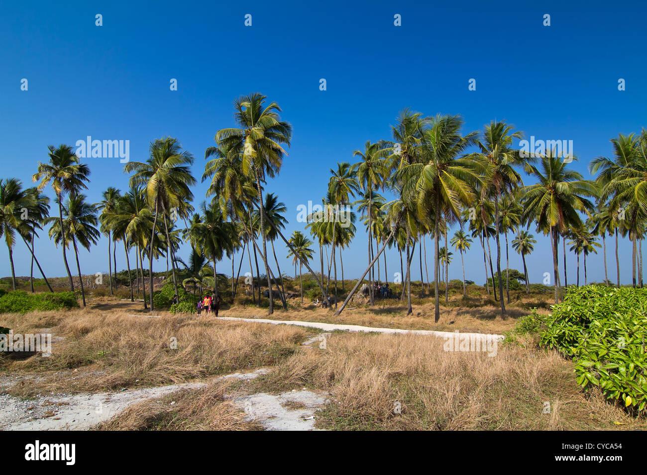 St Mary's Island, Udipi, India - Stock Image